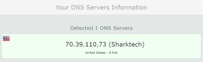 No DNS leaks were found