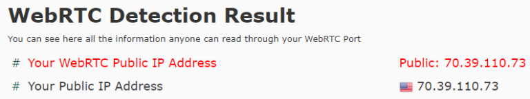 No WebRTC leaks